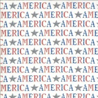 19983-12-America the Beautiful