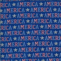 19983-14-America the Beautiful