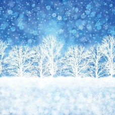 33434-11D-Gradients Holiday